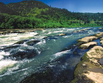 Visit Us_Umpqua River