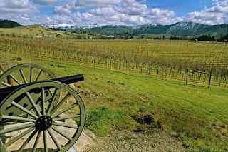 abacela-vineyardsjpg-11ec973001a40a02